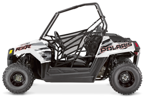 Polaris RZR 170 White Lightning